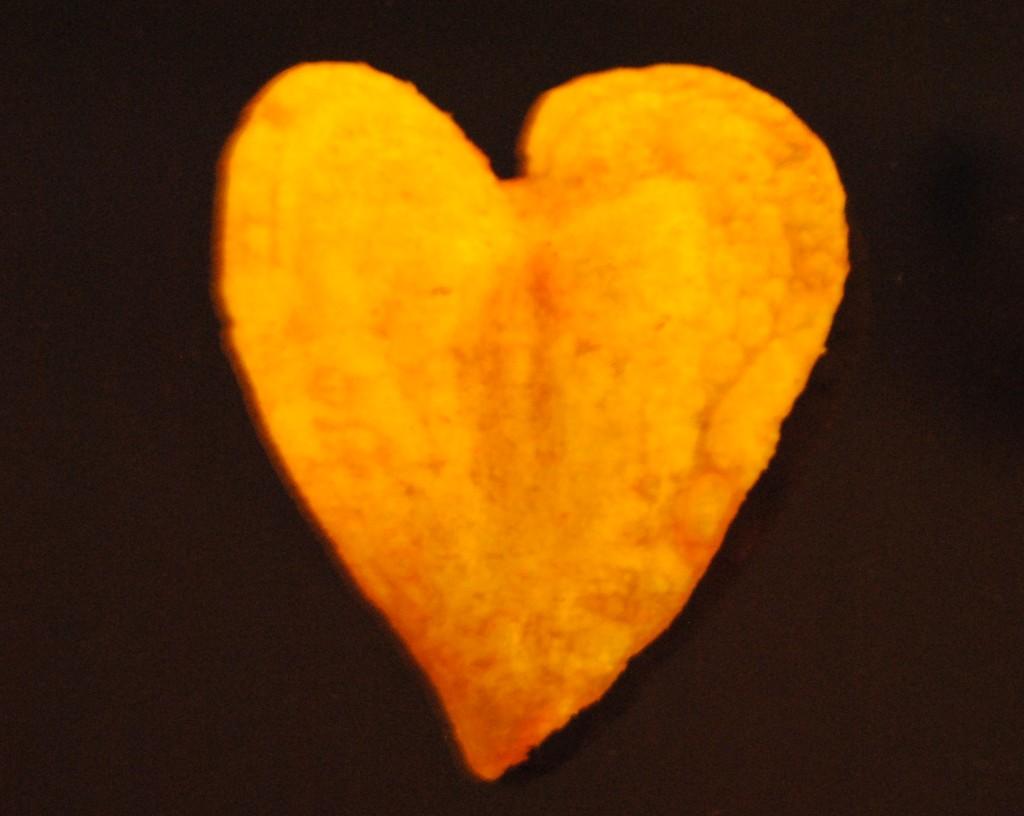 herz-chips